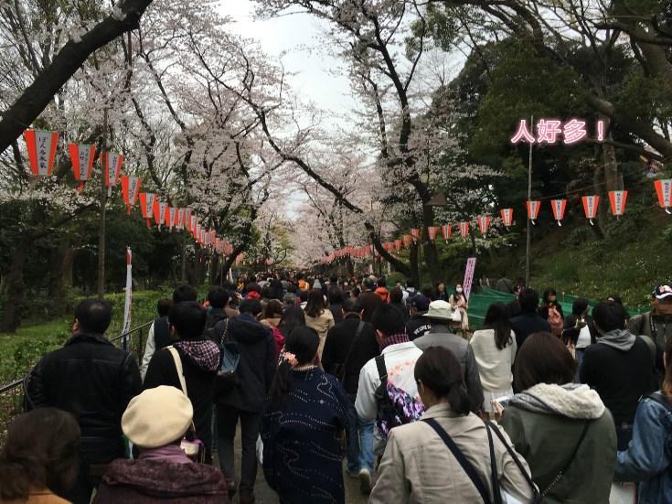 上野恩赐公园1